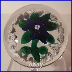 A BEAUTIFUL Antique NEGC COBALT BLUE CLEMATIS With GARLAND Art Glass Paperweight