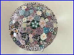 Beautiful Drew Ebelhare Paperweight