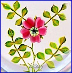 Beautiful Vintage PAUL STANKARD Wild ROSE Studio Art Glass PAPERWEIGHT