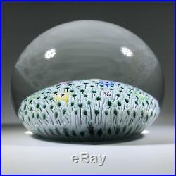Vintage Baccarat Art Glass Paperweight Zodiac Cane Millefiori Carpet Ground