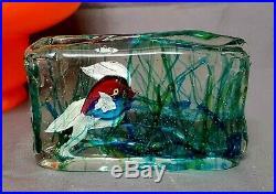Vintage Murano Cenedese Fish Aquarium Block 6 Paperweight Sculpture