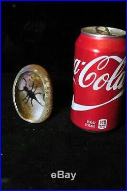 Vintage Signed Richard Satava Glass Egg Insect (scorbian) Paperweight Dated, 1993
